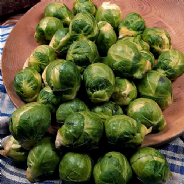 Brussels Sprout Seven Hills - Appx 100 Seeds